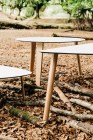 Enea-Lottus-Tables-21_net2